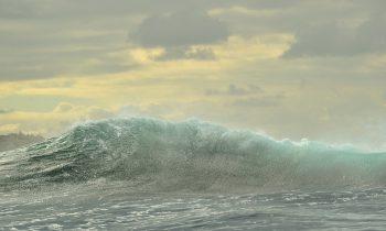 Elder Care Observances: National Oceans Month